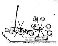 Восьмиконечные звездочки из проволоки для глазирования карамельной массой «Ореха грецкого обливного»