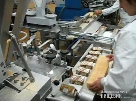 Автомат для расфасовки и упаковки мороженого в брикетах на вафлях